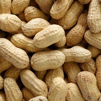 In Shell Peanuts (Salt)
