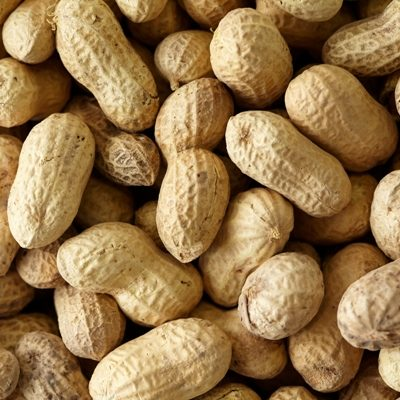 In Shell Peanuts (No Salt)