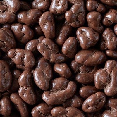 Milk Chocolate Covered Walnuts